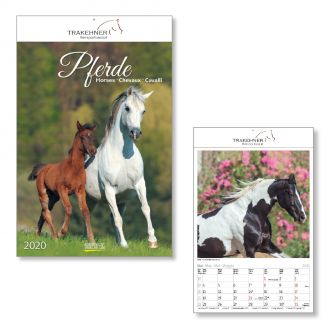 Wandkalender Pferde 2020